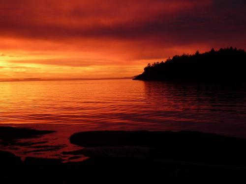 Beachcomber Sunset 3 - Patrick Blair Roycroft