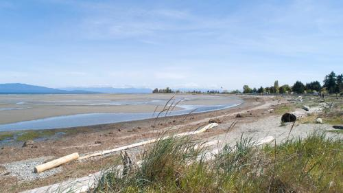 Parksville Beach Boardwalk  - Patrick Blair Roycroft