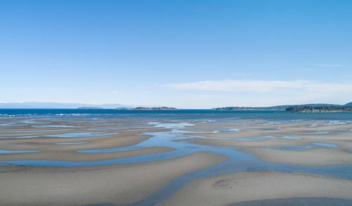 Rathtrevor Beach  - Patrick Blair Roycroft
