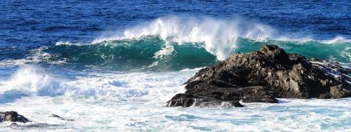 Wectcoast Waves 2 - Craig Carmichael