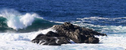 Westcoast Waves - Craig Carmichael