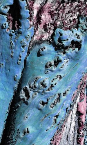 Blue Bark  - Craig Carmichael