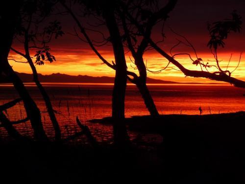 Beachcomber Sunset - Patrick Blair Roycroft