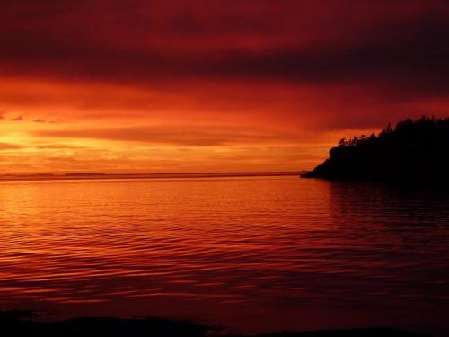 Beachcomber Sunset2 - Patrick Blair Roycroft