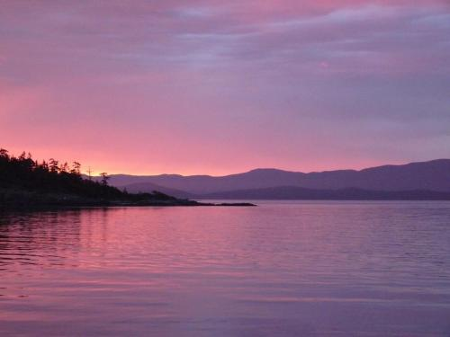 Beachcomber Sunset Purple - Patrick Blair Roycroft