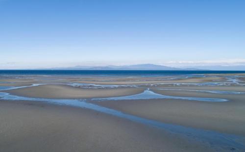 Parksville Beach 2 - Patrick Blair Roycroft